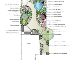 The Planting Plan